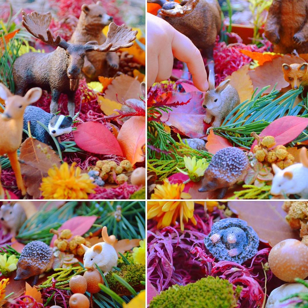 Thanksgiving Inspired  Forest Animals Sensory Bin