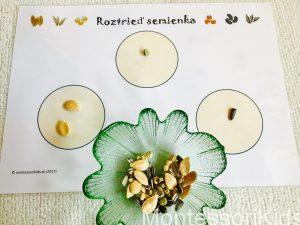 Triedenie semienok