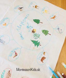 zvieratá v zime myšlienková mapa