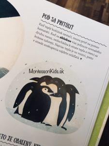 Prečo nie je tučniakom zima