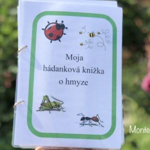 Hádanková knižka o hmyze