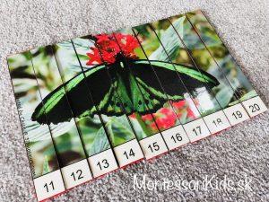 Motýľ počítacia skladačka