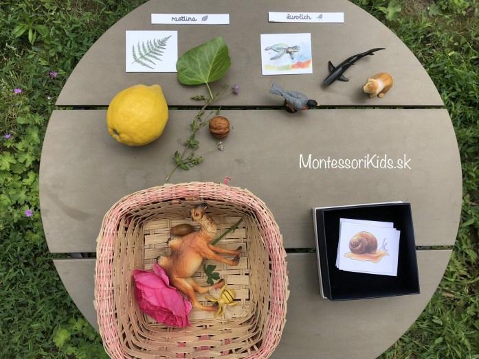 Moj album Montessori Priroda