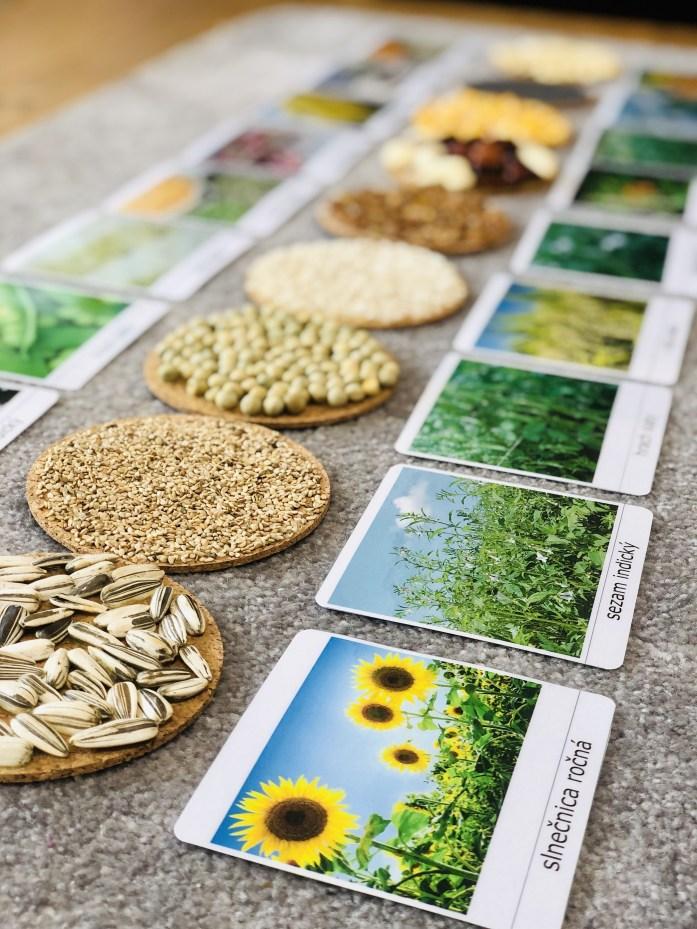 Plodiny, trojzložkové karty