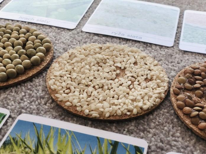 Montessori karty semená