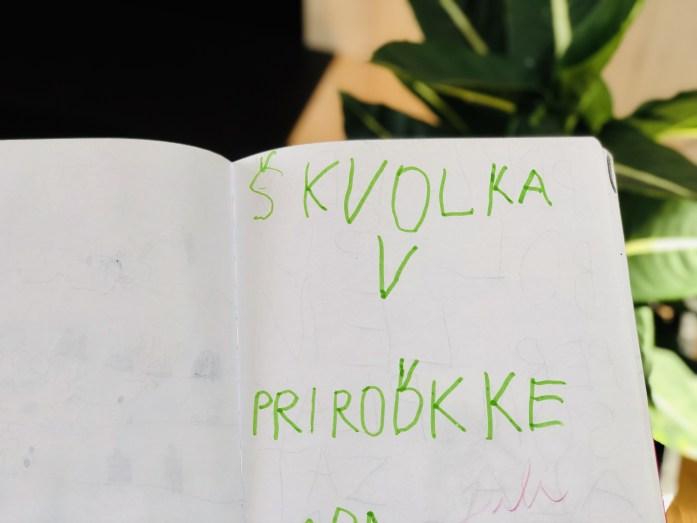 Denník zo školy v prírode