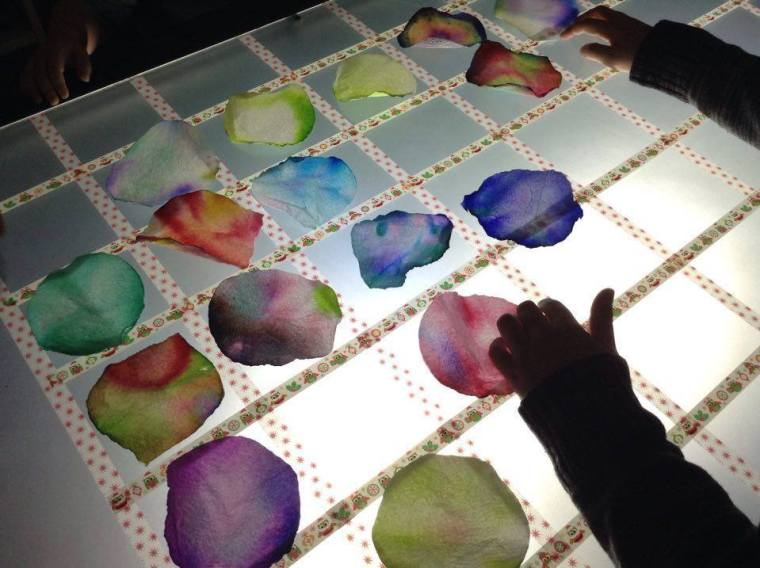 table lumineuse chromatographie