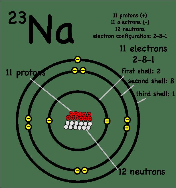labeled diagram of oxygen atom