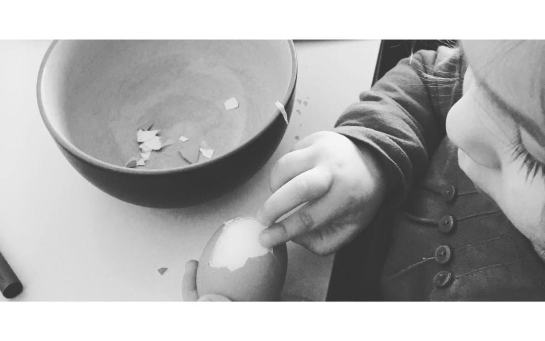 Sucesso ou Domínio: a visão de Montessori