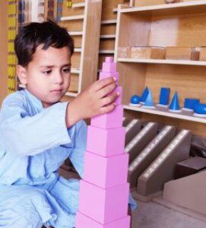 Montessori Pink Towers