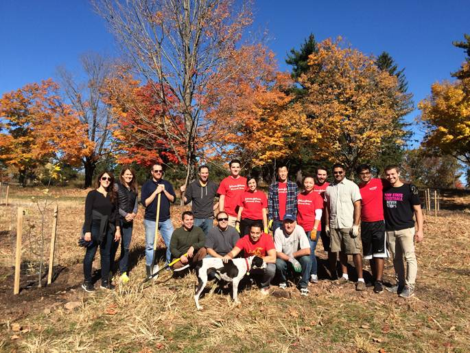 October 2016 Tree planing - J&J