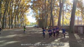 montiliviplus institut montilivi save the children 2014 13