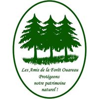 Les Amis de la Forêt Ouareau s'associent à la Coalition pour la préservation du Mont Kaaïkop