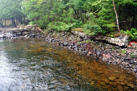 Aménagement de la rive