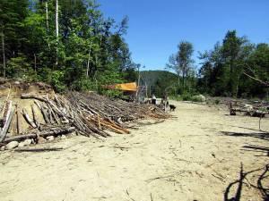 Site de travail pour le Mammouth du Lac Noir