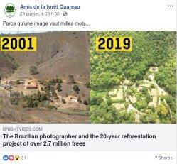 La forêt amazonienne