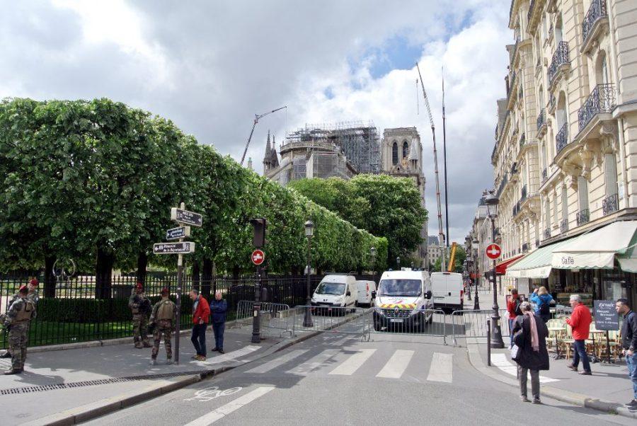 Les grues sur Notre-Dame