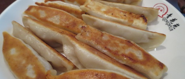 Fried Dumplings. Sammi and Soupe. Photo Rachel LEvine