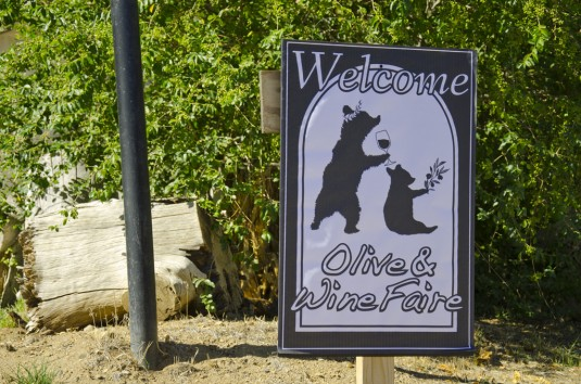 Welcome banner to the Olive and Wine Faire with olive oil tasting