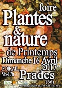 Foire Plantes et Nature