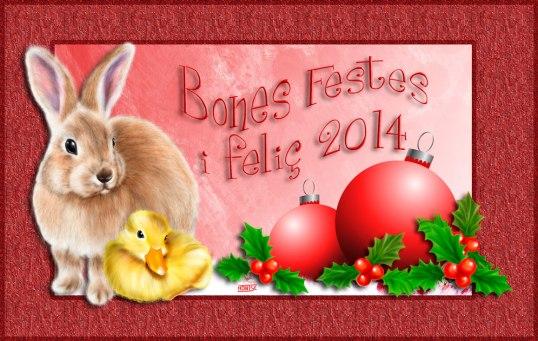 Bon Nadal | Feliz Navidad | Merry Christmas