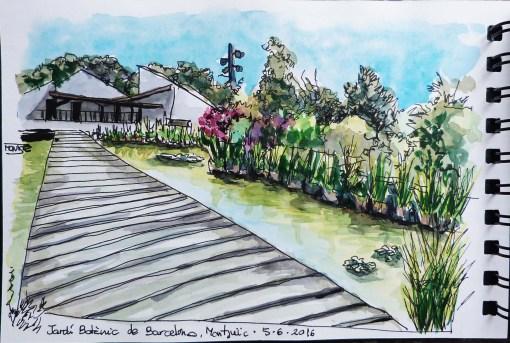 Jardí Botànic de Barcelona, Montjuïc. | Jardín Botánico de Barcelona, Montjuïc. | Botanic Garden, Barcelona, Montjuïc