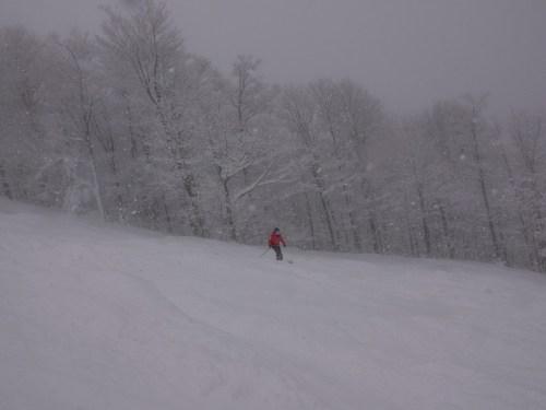 28 janvier - il neige à plein ciel