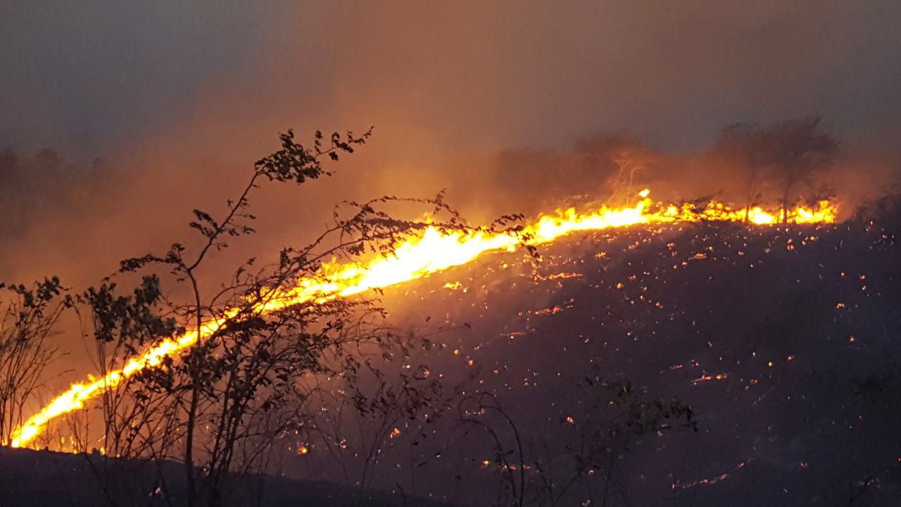 Fuego forestal afecta Jaiquí Picado en La Cuesta de Sajoma
