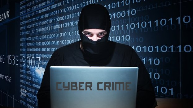 Computer and Cyber Crime Bill welcome long overdue