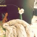 soft petals arch upwards