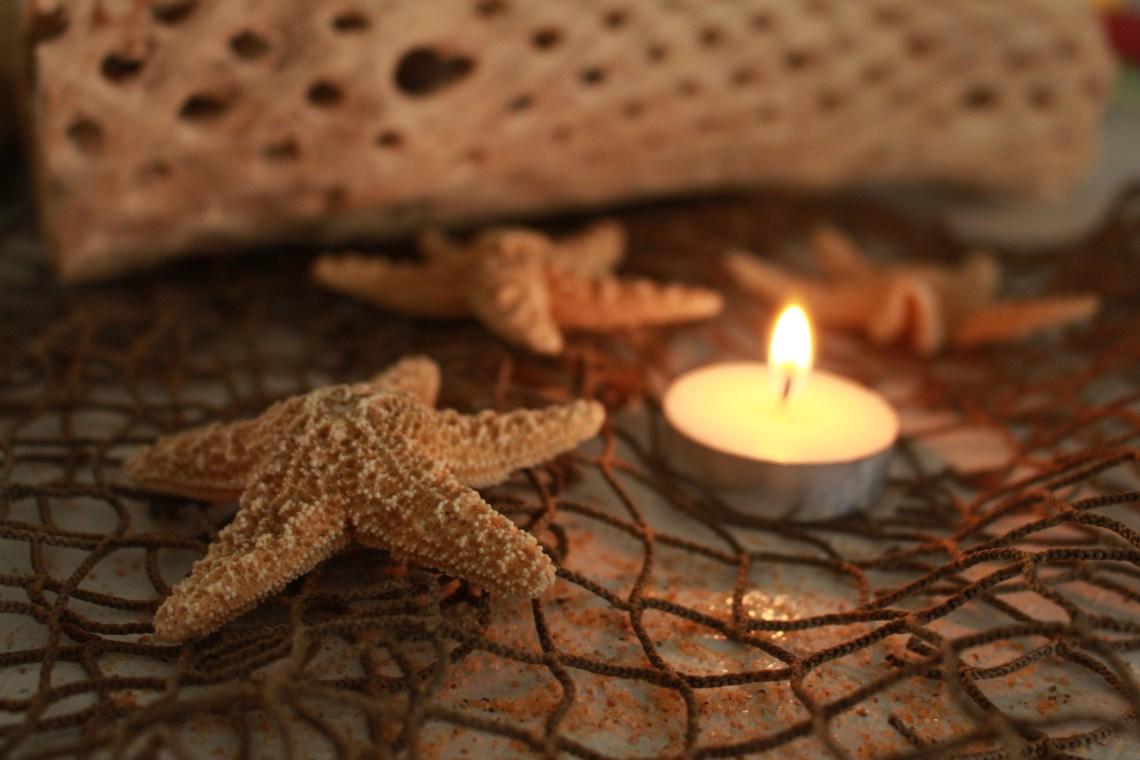 starfish and driftwood