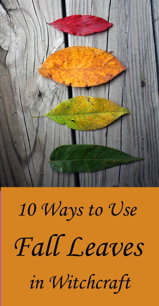 How to use fall leaves in witchcraft and magic spells, paganism, ritual..