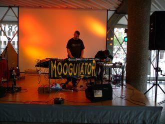 moogulator_26