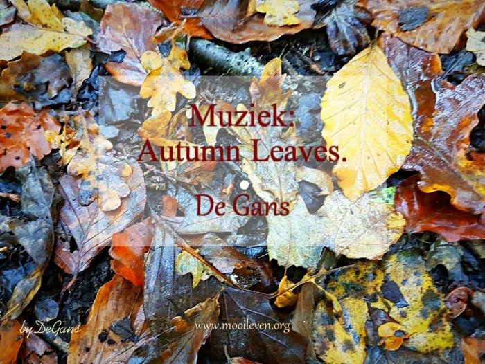 Muziek autumn leaves