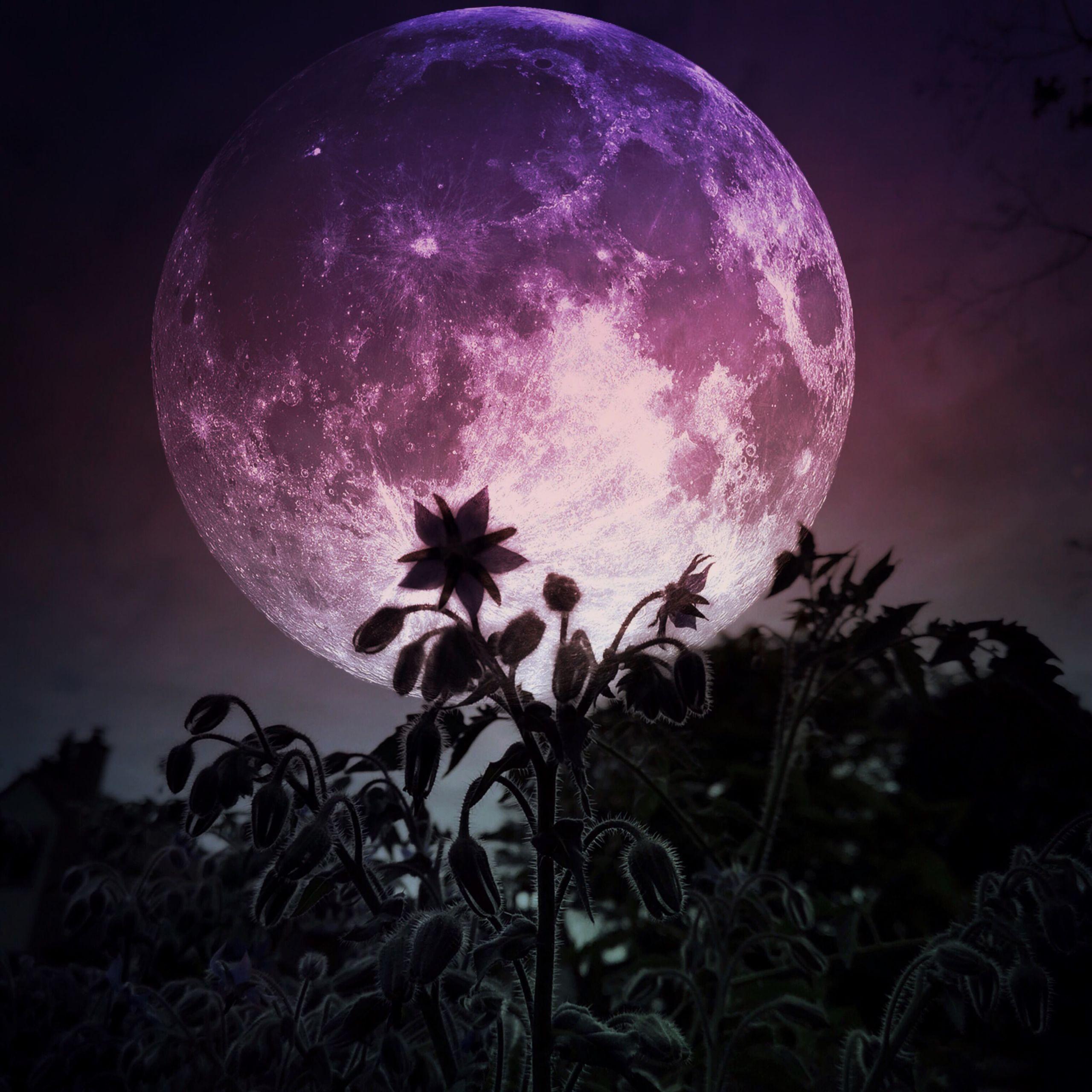 Ритуалы на Полнолуние. Как загадать желание на полную Луну