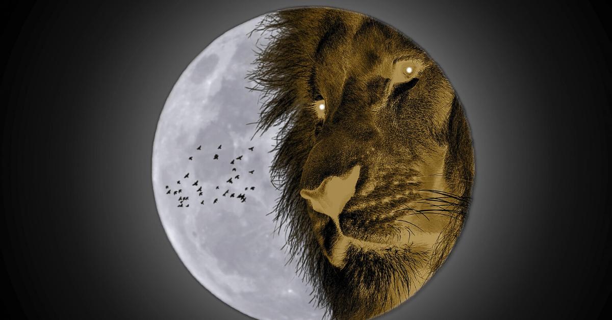 Луна во Льве. Особенности и качества лунного Льва