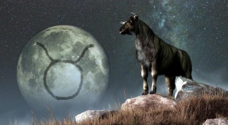 Луна в Тельце. Сильные и слабые стороны. Луна во втором доме