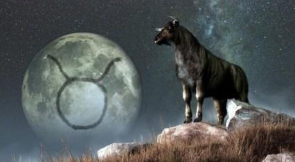 Луна в Тельце в гороскопе рождения. Сильные и слабые стороны. Луна во втором доме