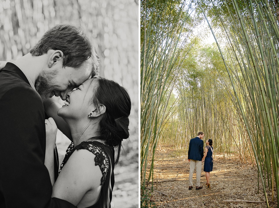 11 Birmingham Botanical Gardens engagement session
