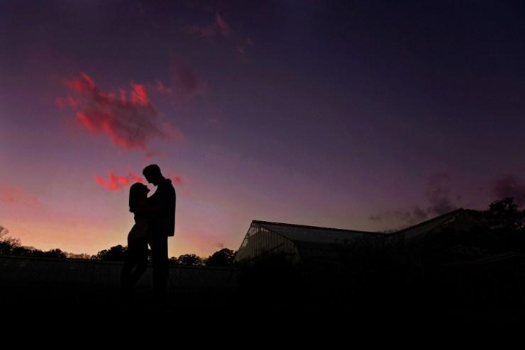 29 Romantic Sunset engagement pictures Birmingham AL
