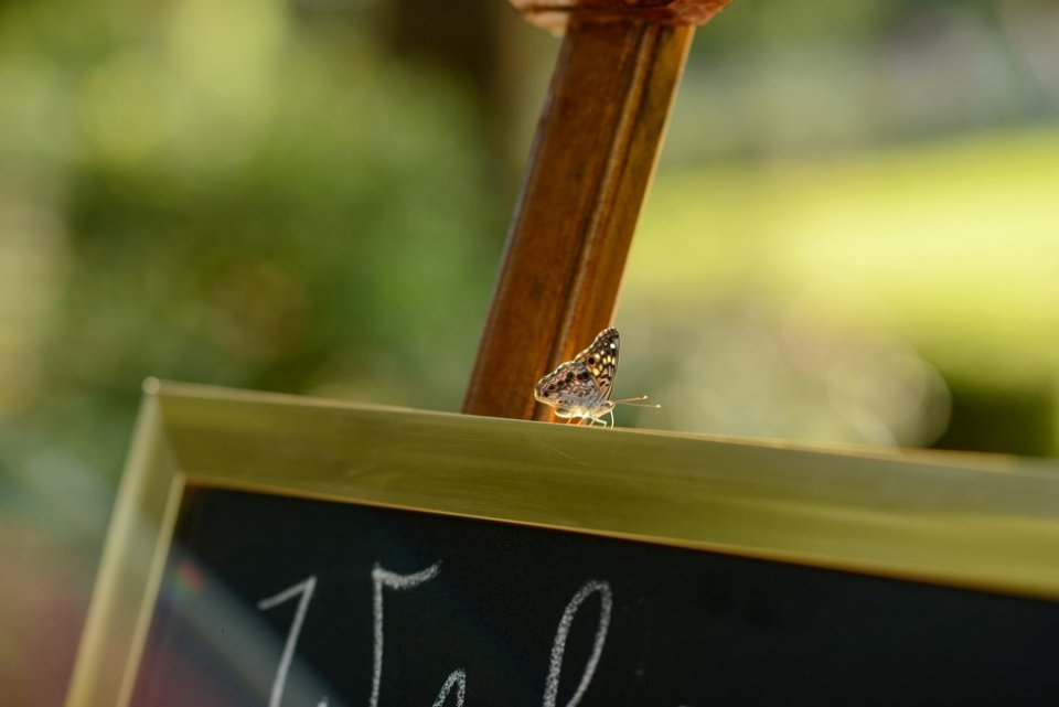 35-creekside-plantation-mooresville-alabama-wedding-photographer