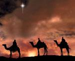 camelscrop