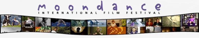 MIFF WAVY FILM IMAGE BANNER