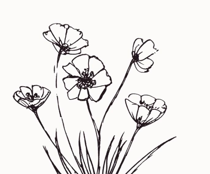 Kusus dewasa Contoh Gambar Taman Bunga Kartun