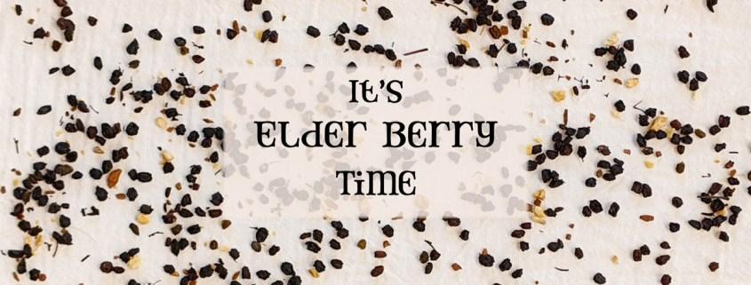 Elderberry Kit Sale