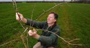 Stephen Planting Tree