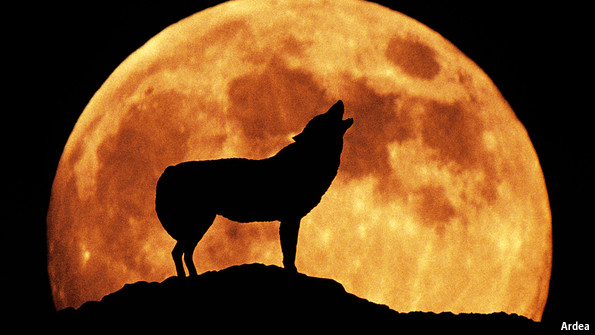 CAN A FULL MOON AFFECT BEHAVIOUR?