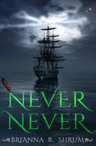 Never Never by Brianna Shrum