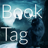 WWE Superstar Book Tag: Men's Edition