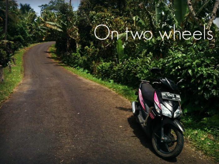 bike rides, Ubud, Bali, Indonesia, Moonlitekingdom